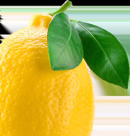 Lemon garden Ostrów Wlkp